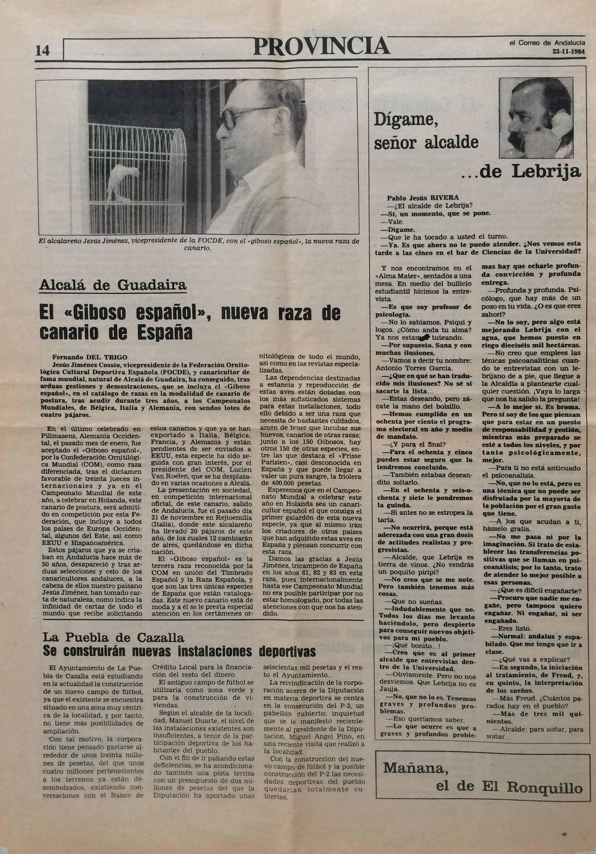 diario_correo_de_andalucia_giboso_cossio_84